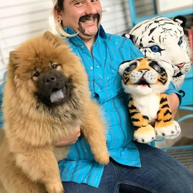 Un fanático de Netflix posa con su perro y dos dos tigres de peluche para el #TigerKingChallenge