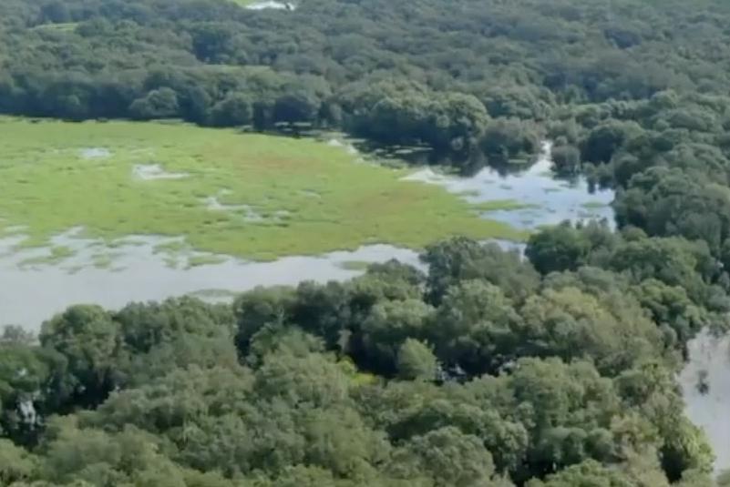 La búsqueda de Brian Laundrie de la reserva del pantano entra en su segunda semana